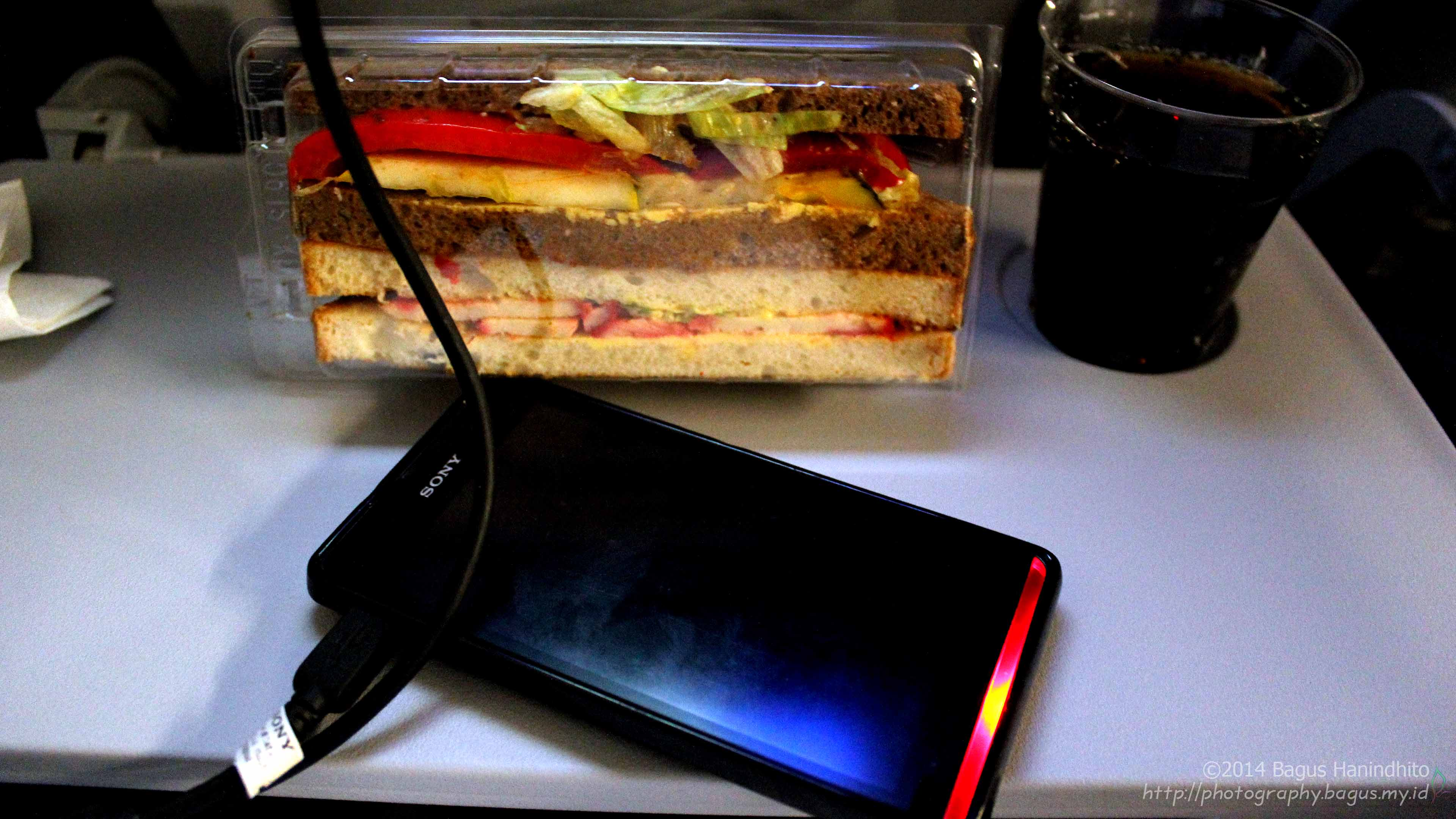 A delicious sandwich was served as a light meal during my flight from CGK to KUL using LH783. There was also a USB port that could be used as smartphone charger.