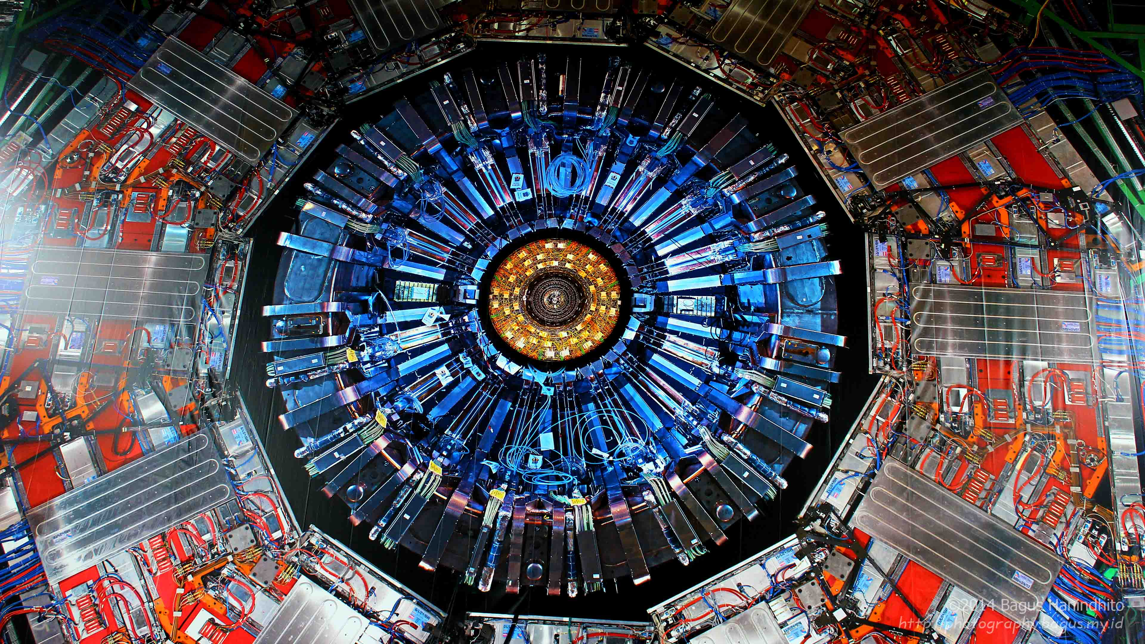 Large Banner in a scale of 1:1 showing the cross-section of CERN's heaviest particle detector, the Compact Muon Solenoid.