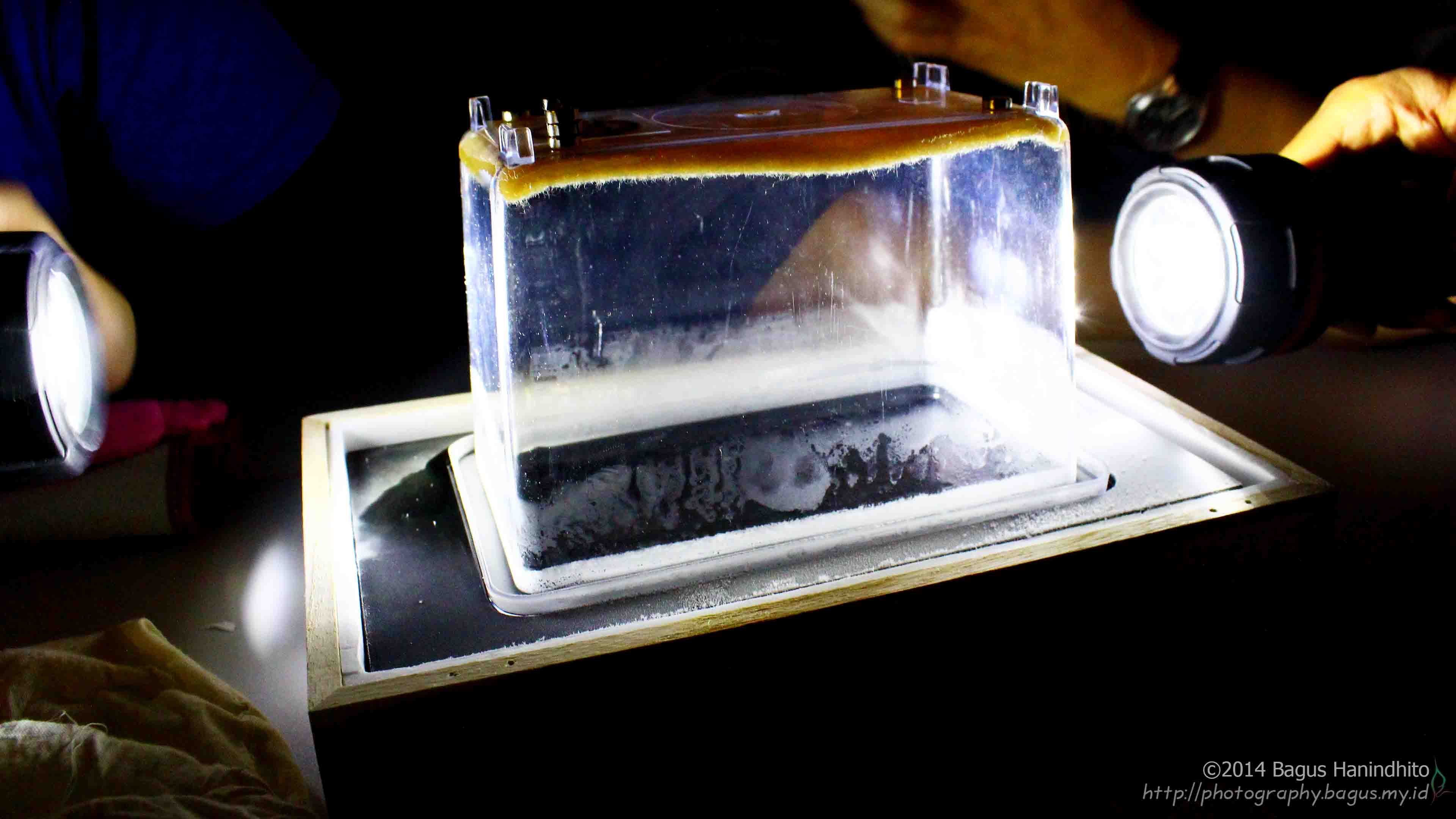 The newly built Cloud Chamber was being observed in dark situation to make it easier to see the particle tracks.
