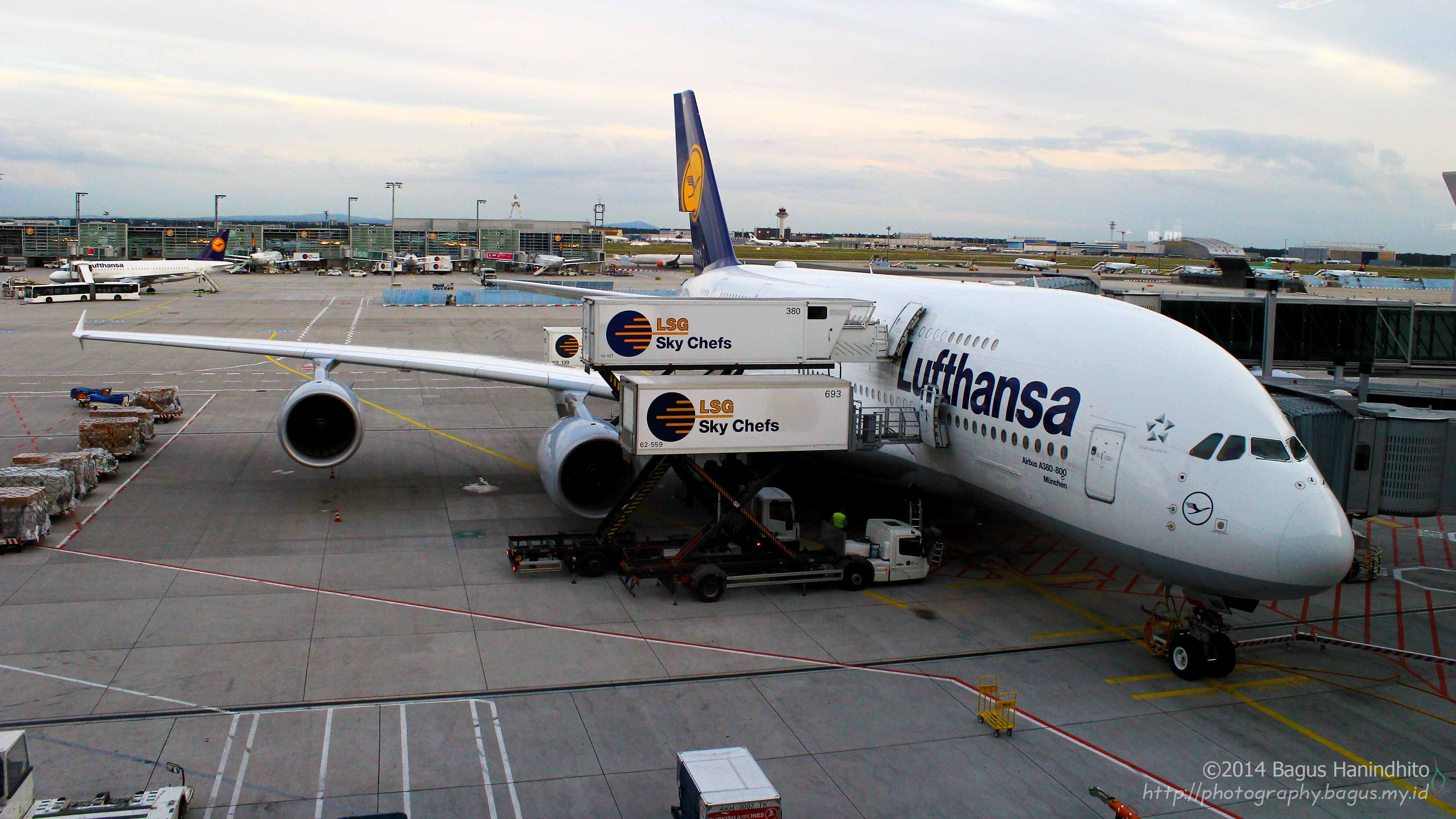 Lufthansa Airbus A380-800 codename München served the flight LH778 from FRA to SIN.